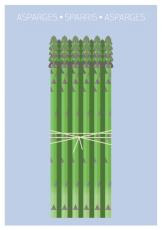 Asparagus-A5-Front