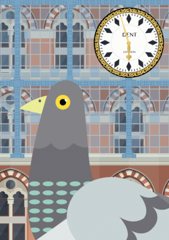 Pigeon at St Pancras vector graphic illustration - designed by Emma Sivell / SIVELLINK